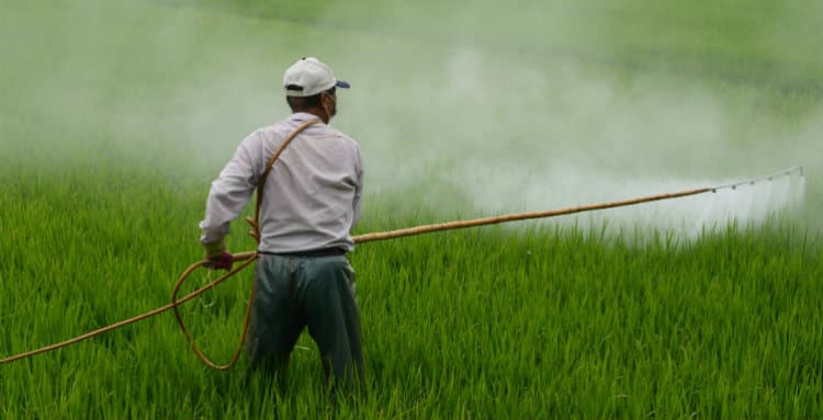 Farm Worker Spraying Roundup